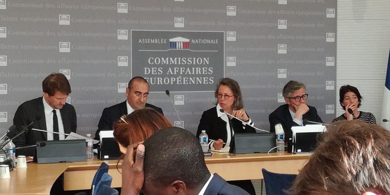 Audition de Laurent Nuñez, Secrétaire d'État auprès du Ministre de l'Intérieur